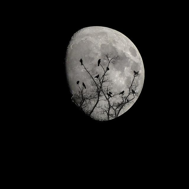 moon-2093161_640