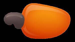 cashew-1704447_960_720